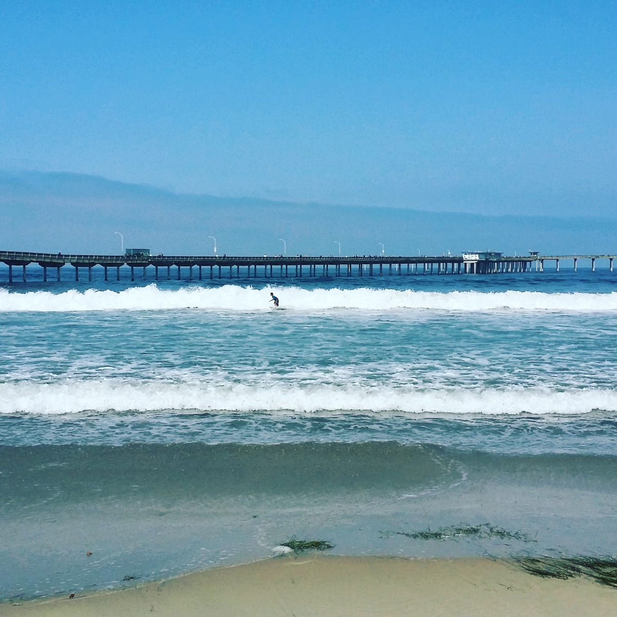 San Diego House Rentals On The Beach: Top 5 Places To Visit In Ocean Beach, San Diego